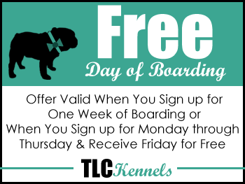 Free Day of Boarding - Offer Valid When You Sign up for One Week of Boarding or When You Sign up for Monday through Thursday & Receive Friday for Free